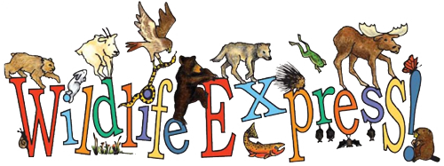 Wildlife Express Newsletter