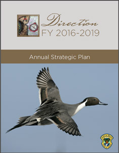 Annual Direction Document