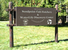 WaterLife Discovery Center Sign - Sandpoint, Idaho