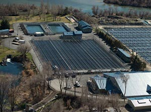 Niagara springs fish hatchery idaho fish and game for California fish hatcheries