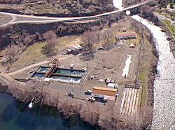 aerial shot of Oxbow hatchery