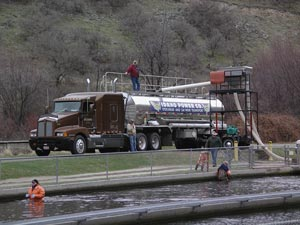 Rapid River hatchery fish transport