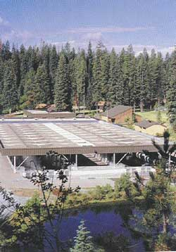 overview of McCall hatchery