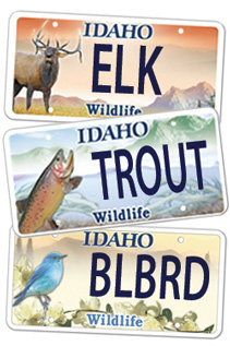 Wildlife License Plates - Get yours today!