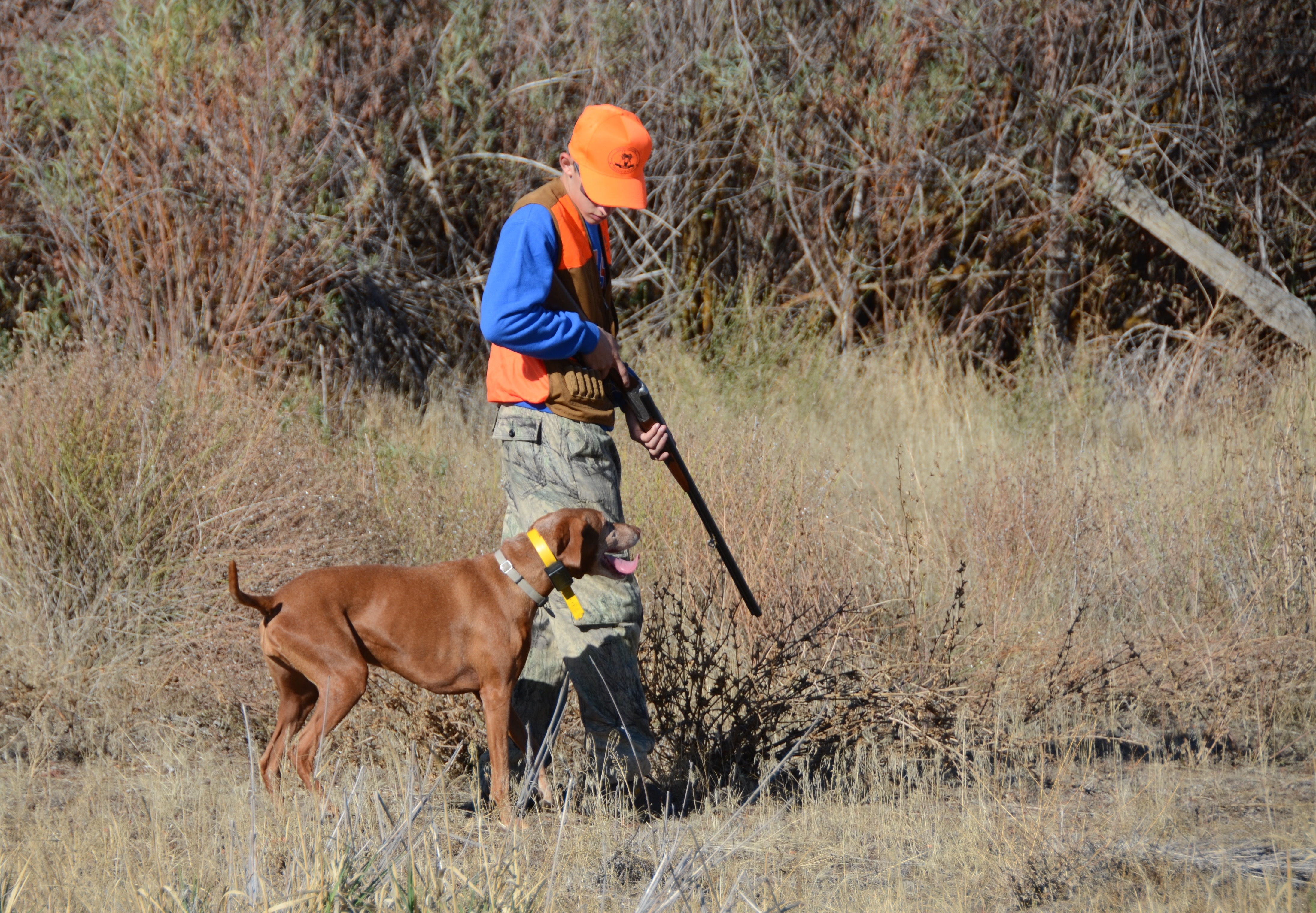 Many upland game bird seasons open in september idaho for Wa fishing license cost