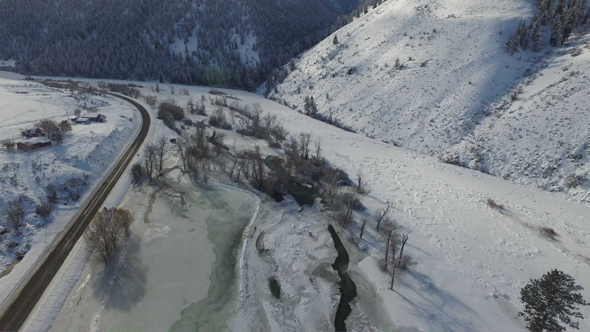 Thinking about steelhead fishing on the upper salmon river for Idaho fish and game hunter report