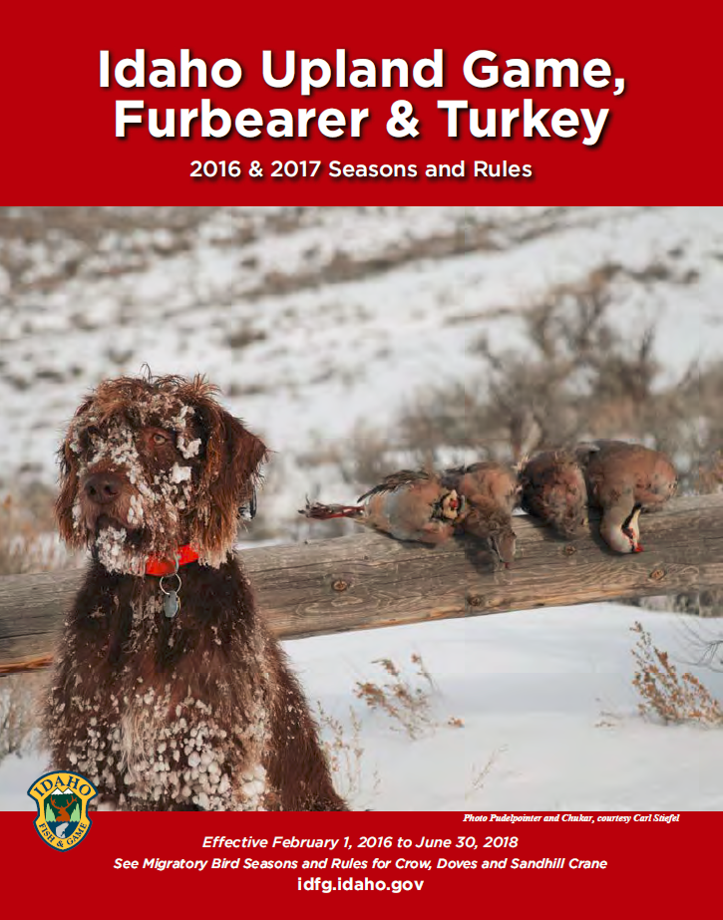 upland bird, upland game, turkey, and furbearer seasons and rules cover