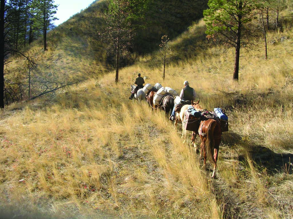 enforcement officers horse packing into the back country October 2005 wide shot
