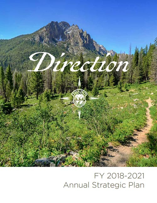 Annual Strategic Plan - Direction document