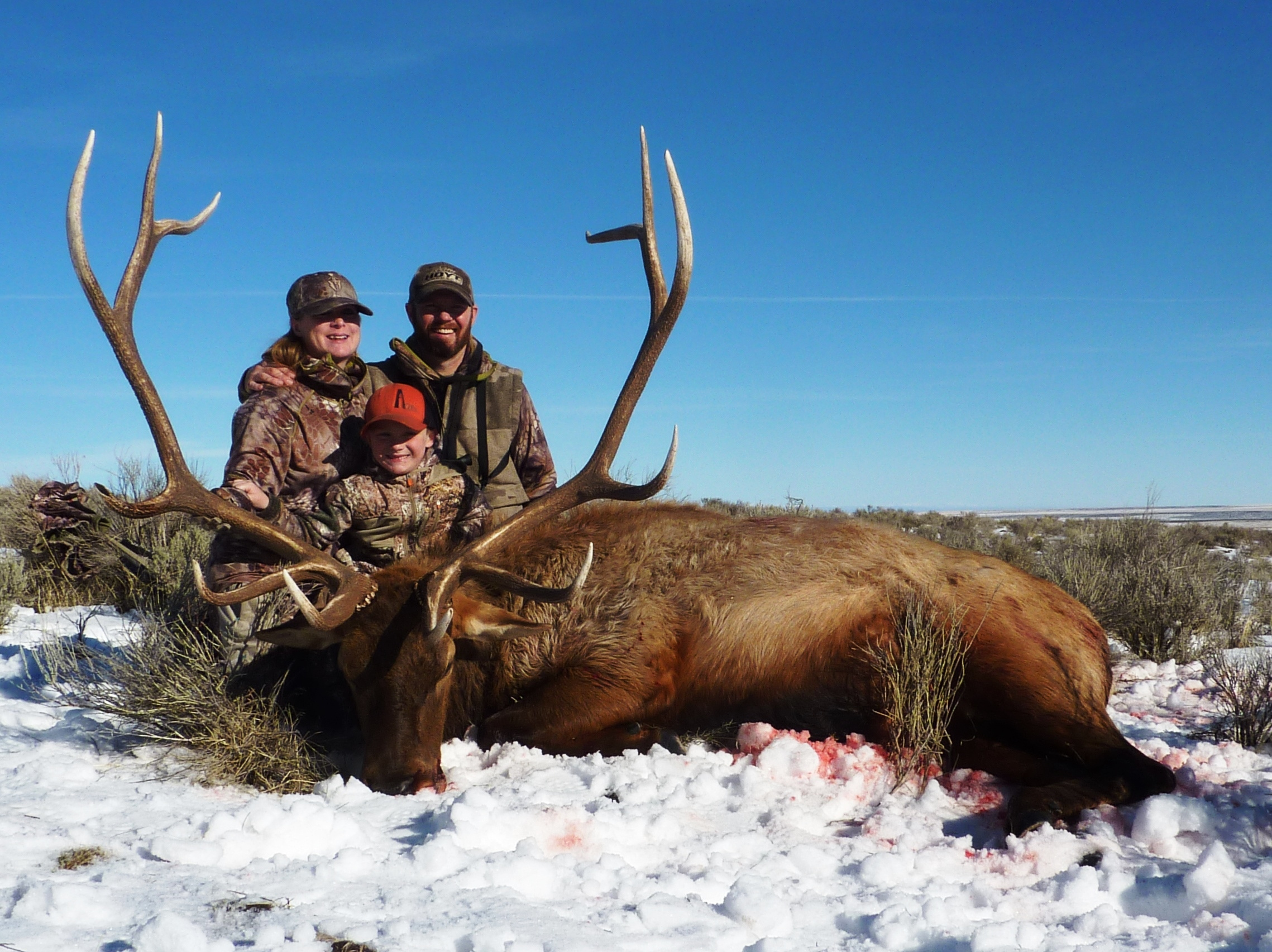 Elk Super Hunt