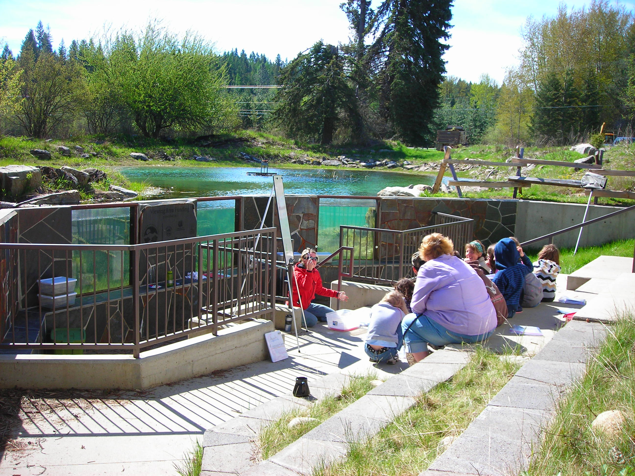 class at the amphitheater at the Waterlife Discovery Center with the fish viewing windows and forest in the background in Sandpoint wide shot May 2011