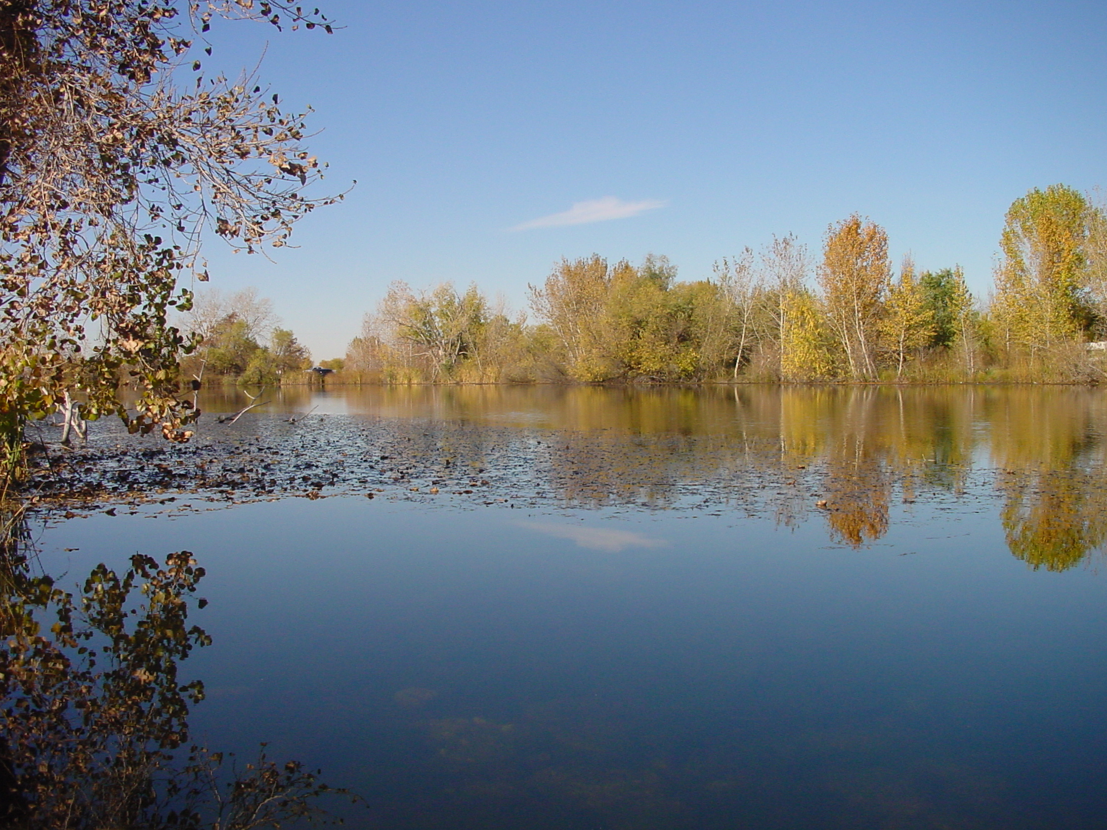 wide shot of Duff Lane Pond near Middleton Idaho November 2011