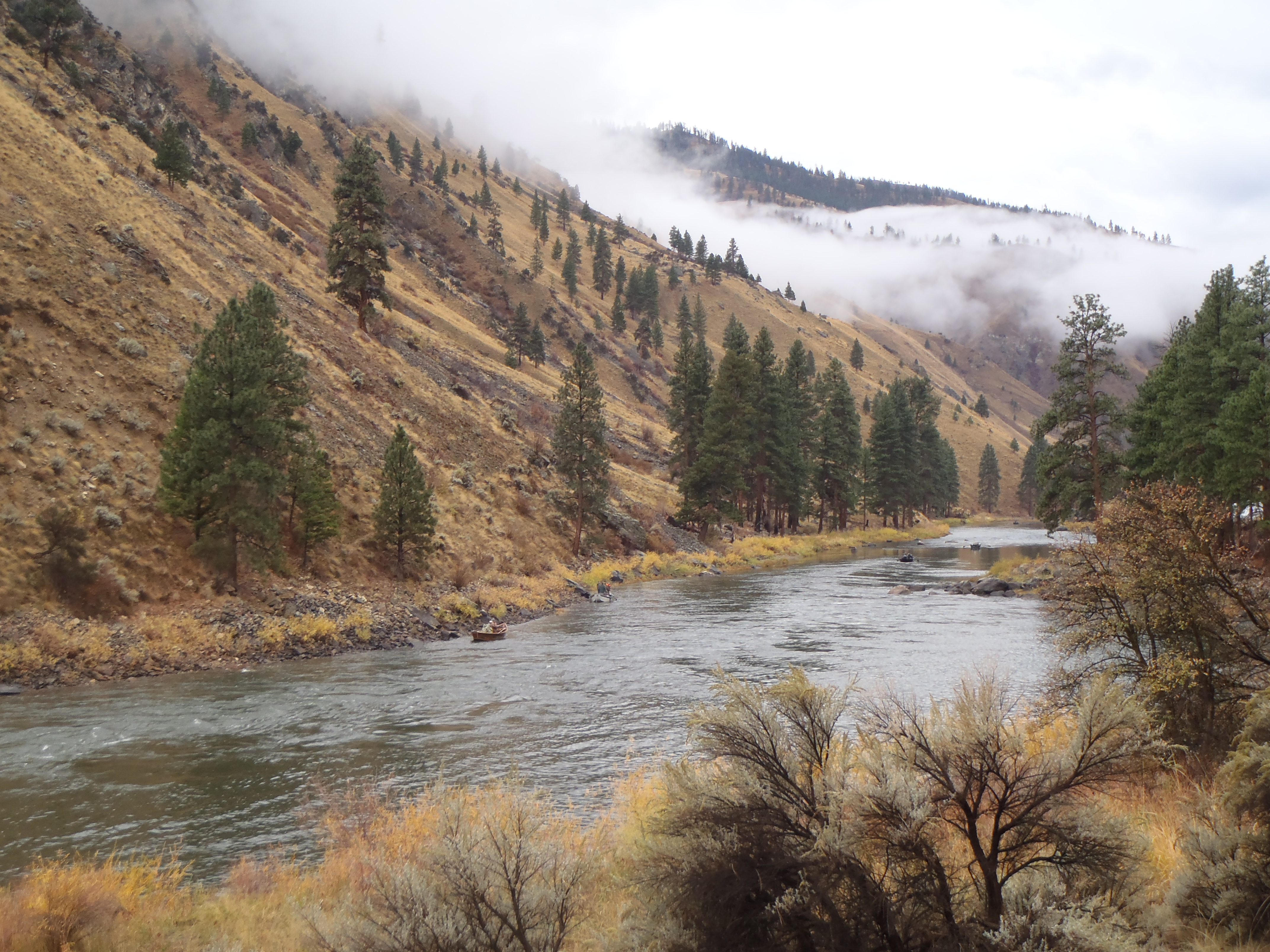 Steelhead Fishing on the Salmon River in October 2016