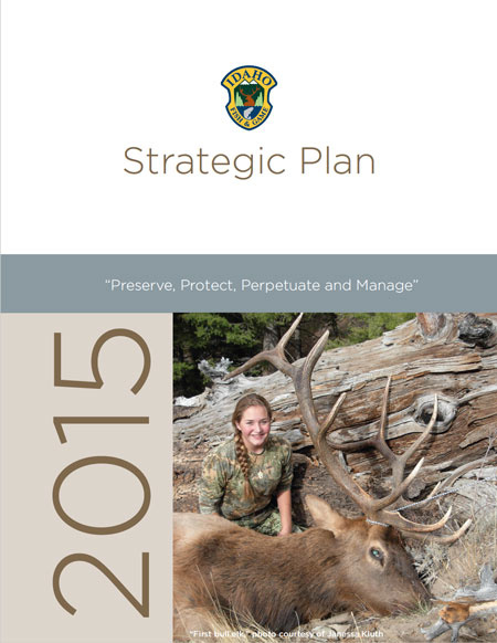 Strategic Plan Cover 2015