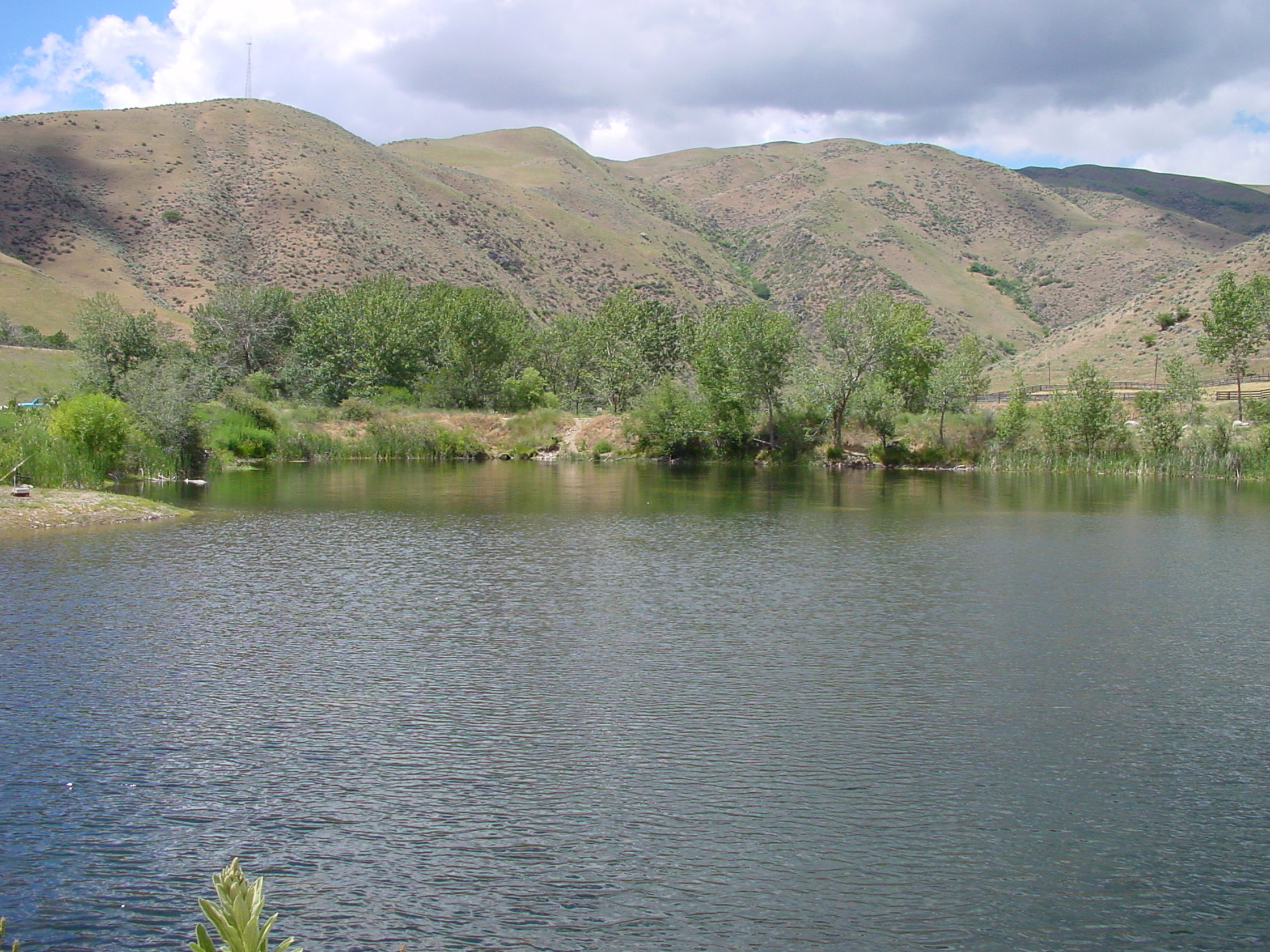 wide shot of Horseshoe Bend Pond in Horseshoe Bend Idaho June 2001