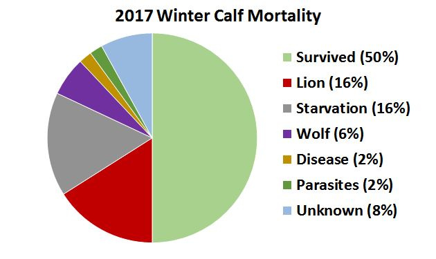 2017 R1 calf mortality graph
