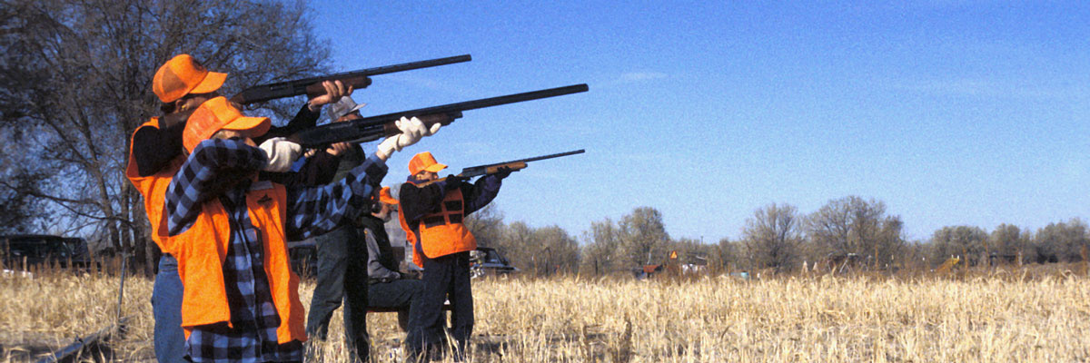 Youth pheasant hunt on WMA