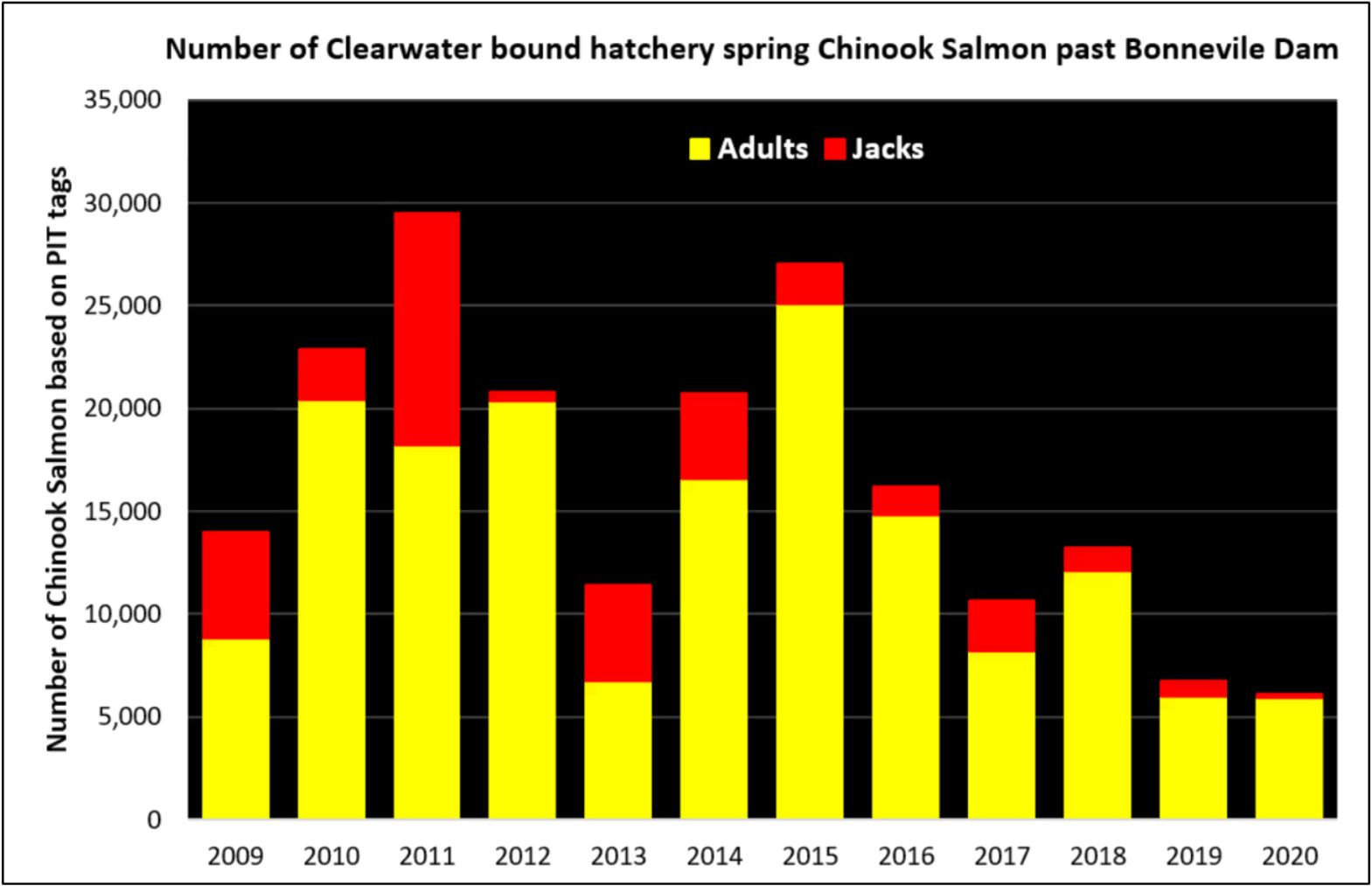 clearwater_chinook_returns
