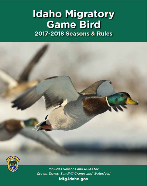Seasons and rules for migratory game birds