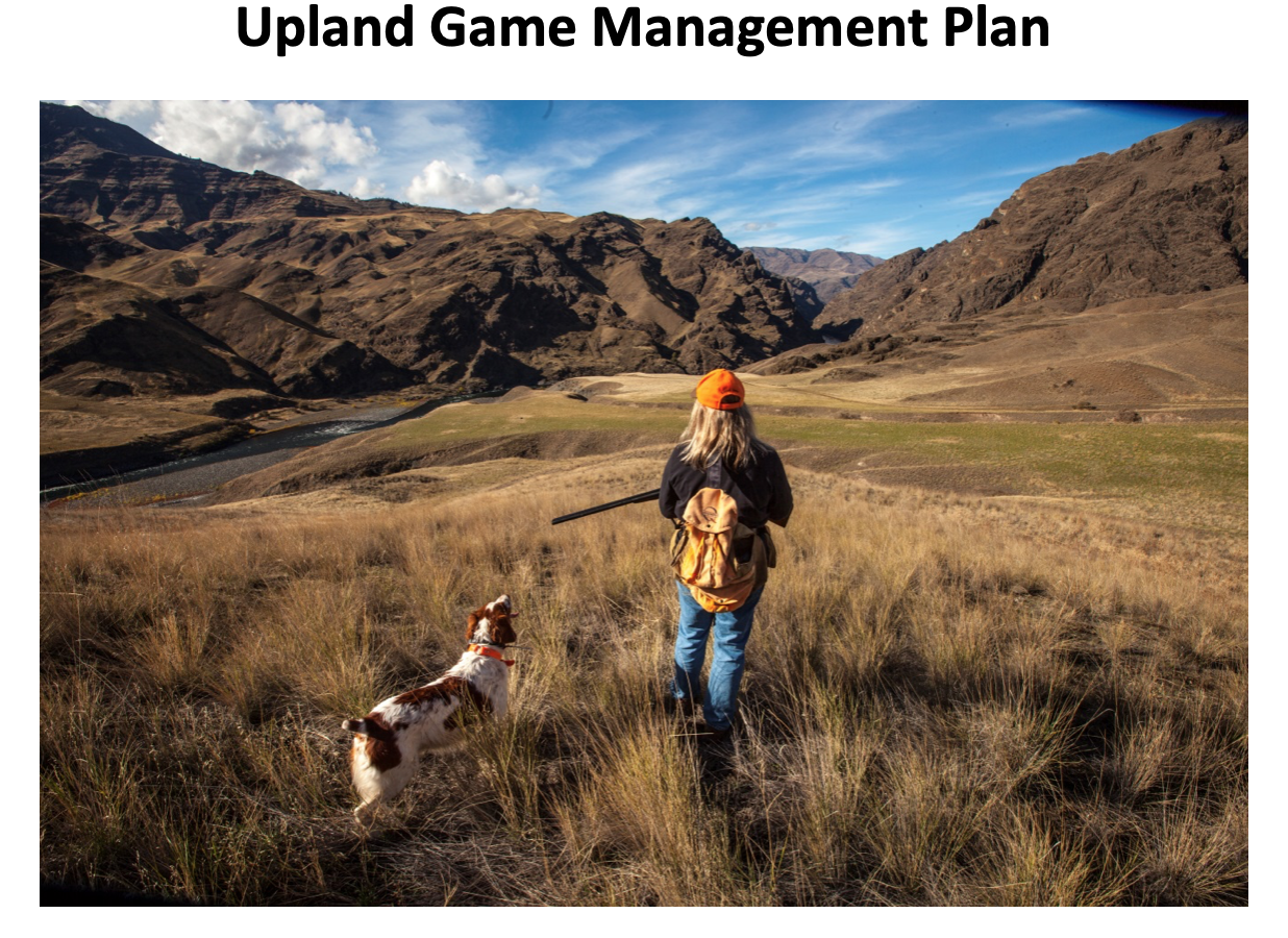 draft-wildlife-upland-game-management-plan-2019-cover