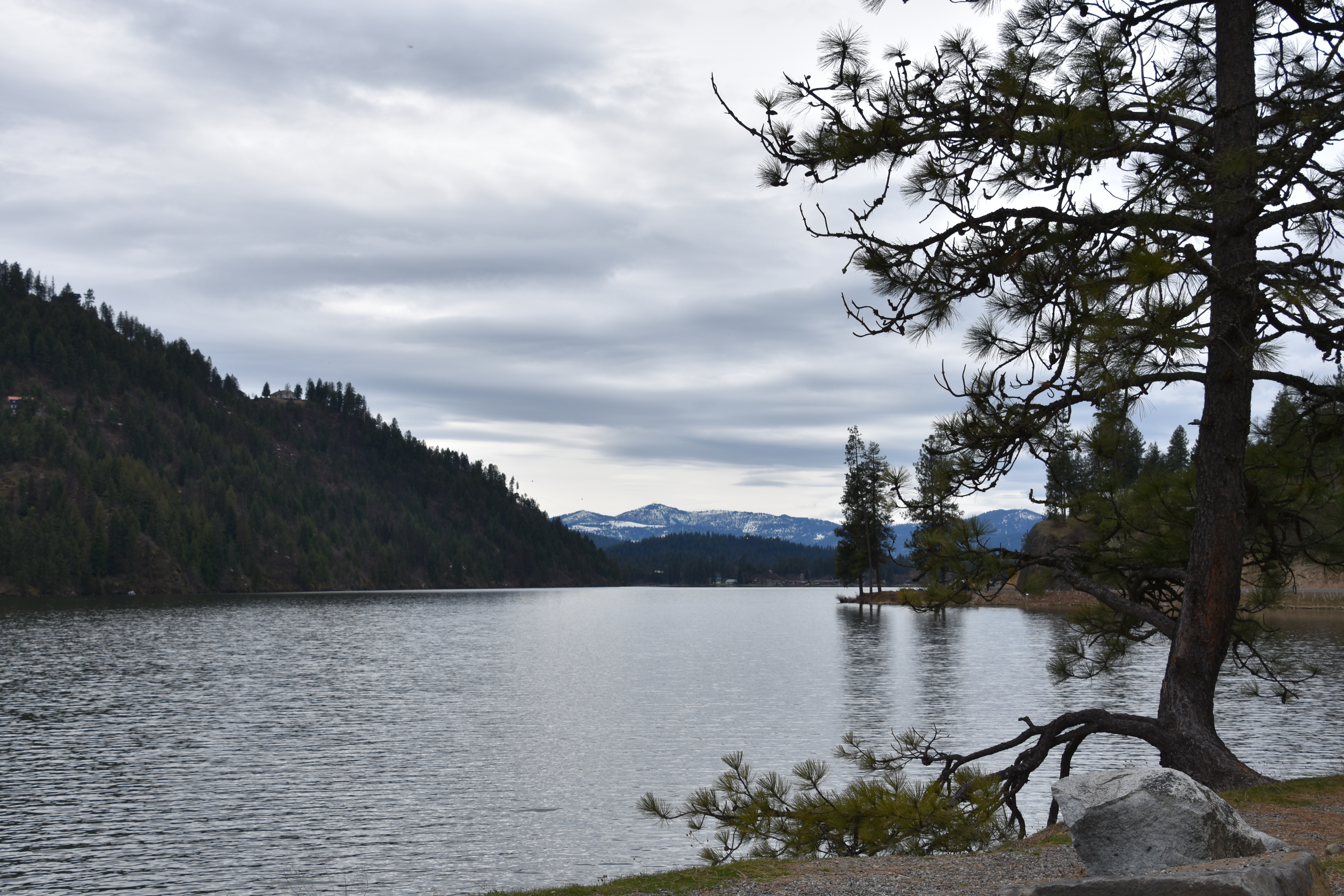 Trout stocking at Fernan Lake gets a big boost for spring and beyond