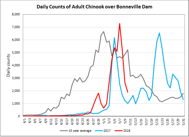 Daily counts of Adult Chinook over Bonneville Dam