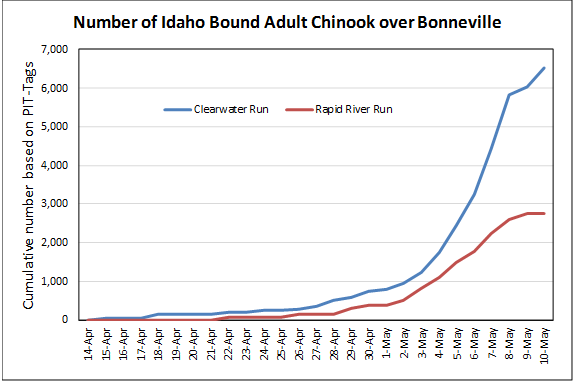 Number of Idaho Bound Adult Chinook  over Bonneville