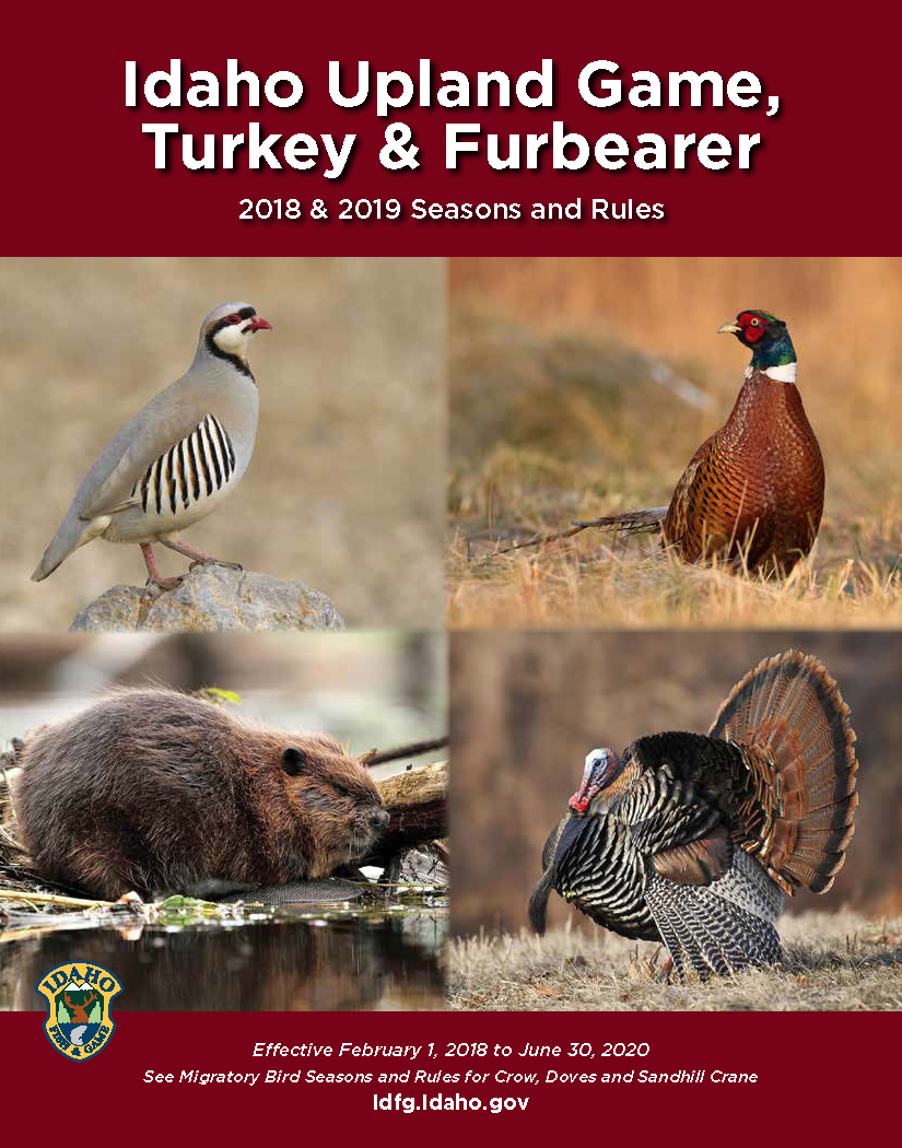 Seasons and rules booklet for upland game, furbearers and turkey