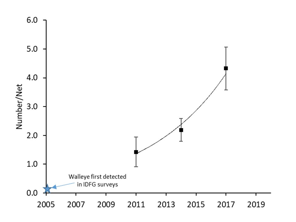 LPO walleye