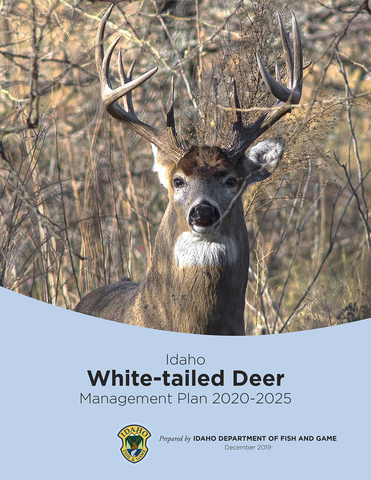 White-tailed Deer Management Plan Cover