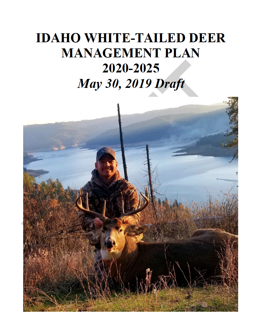 white-tailed-deer-plan-draft-cover