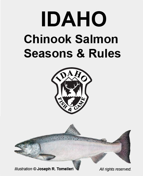 Chinook salmon seasons and rules idaho fish and game for Idaho fish and game regulations