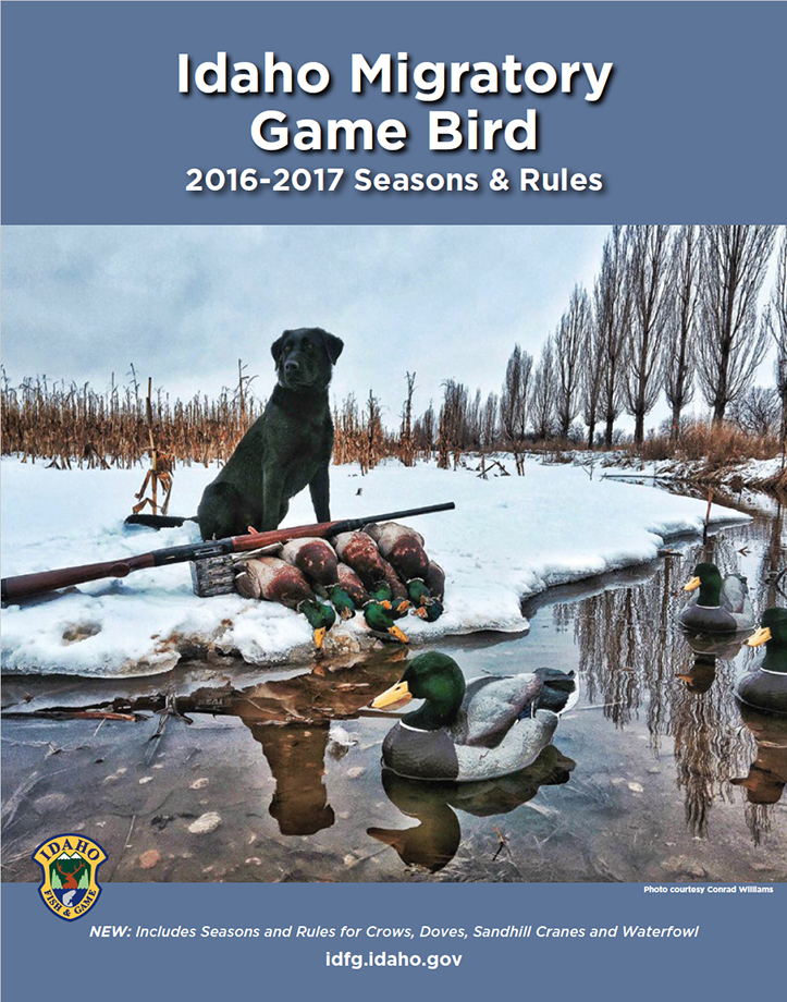Migratory game bird seasons and rules idaho fish and game for Idaho fish and game regulations