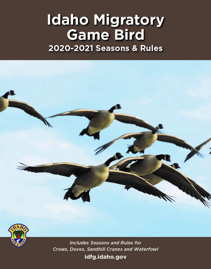 Migratory Game Bird 2020-2021 Seasons and Rules Cover