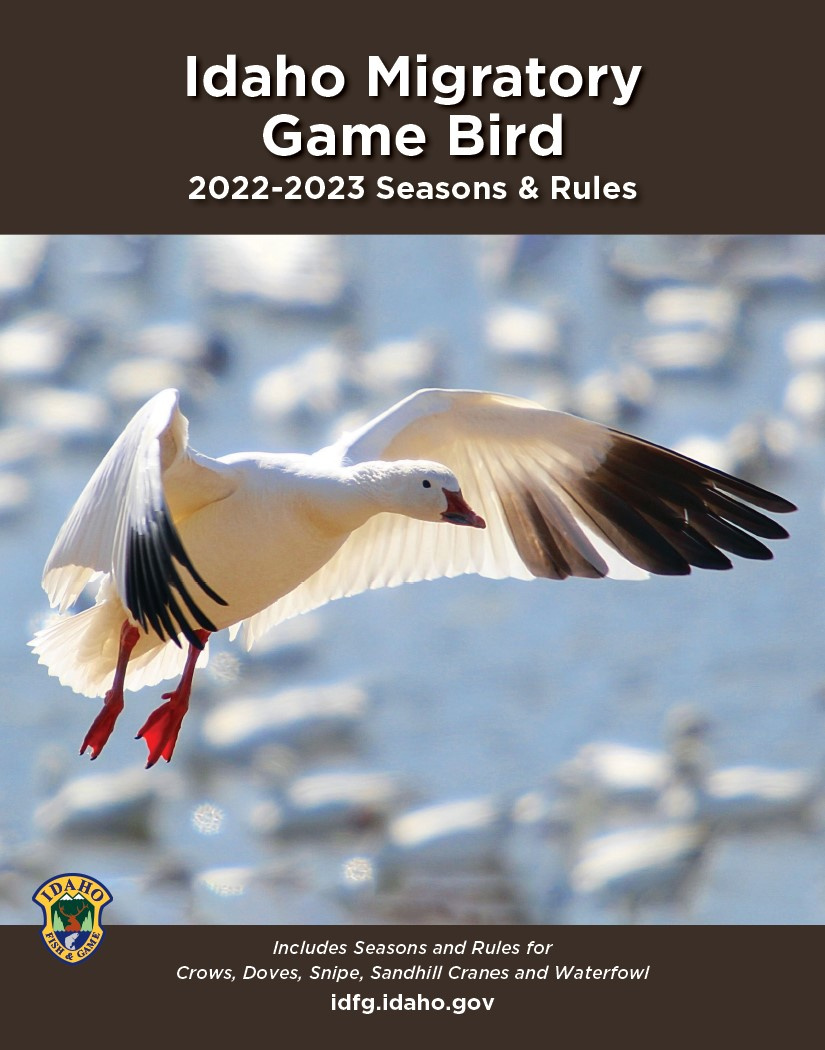 Migratory Game Bird 2021-2022 Seasons and Rules Cover