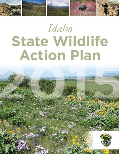 State wildlife action plan idaho fish and game for Idaho fish and game