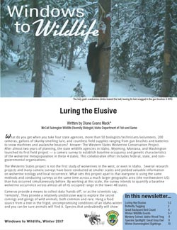windows to wildlife newsletter