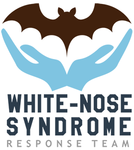 White-nose syndrome working group logo