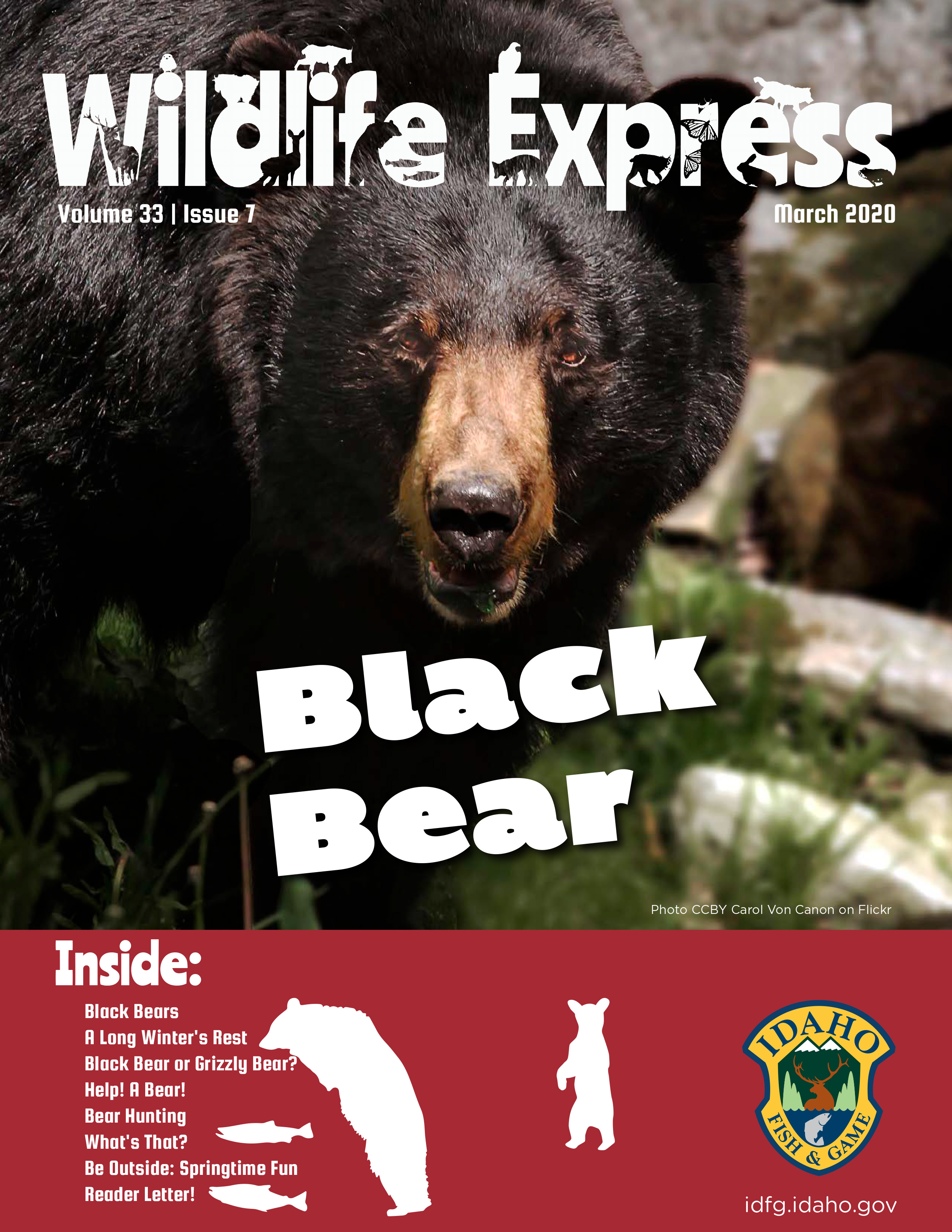 Wildlife Express Cover: Bears