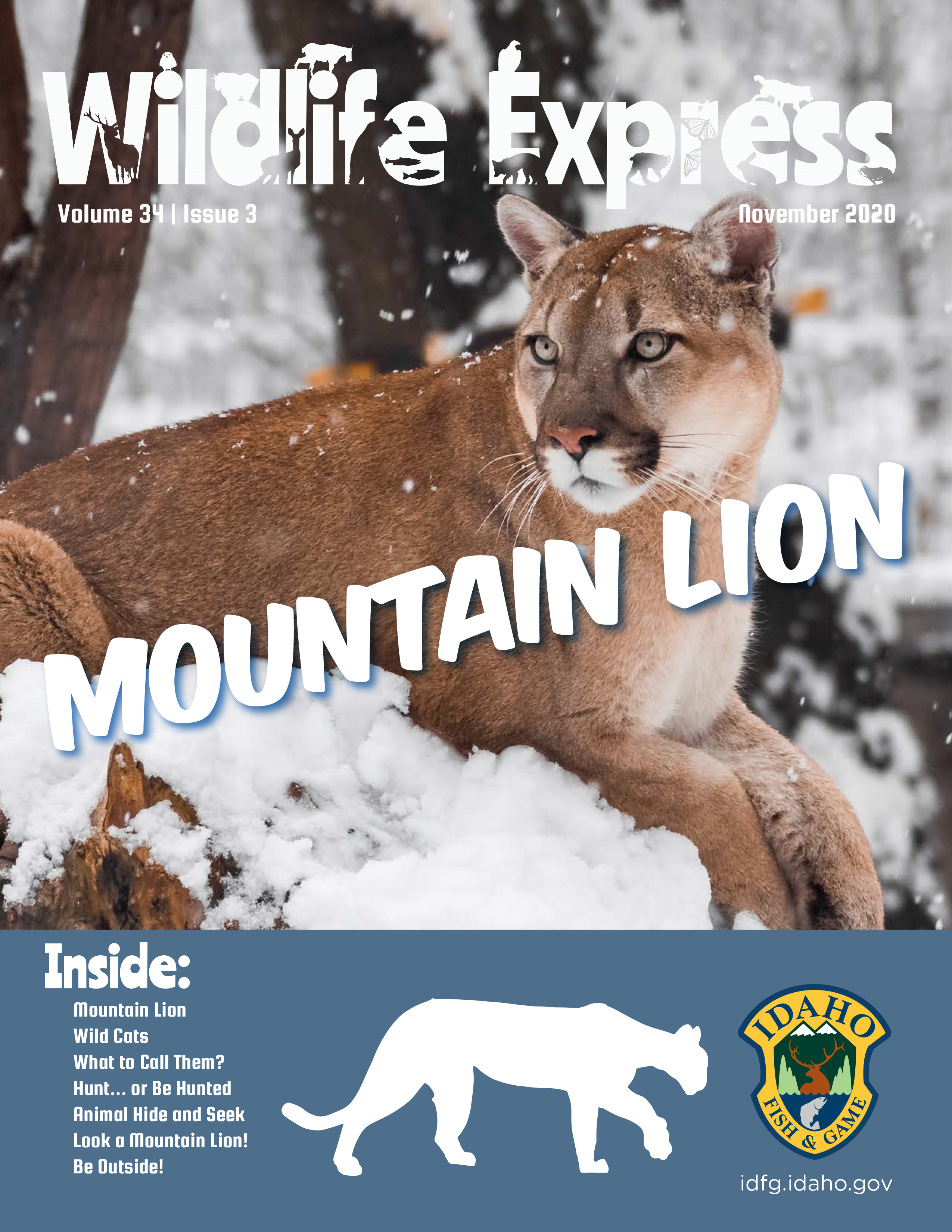 Wildlife Express Cover: Mountain Lions