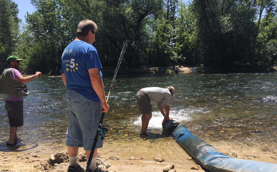 Chinook salmon planted in the Boise River 2018
