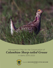 columbian-sharp-tailed-grouse-management-plan-2015-2025.png