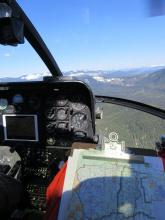 Wildlife helicopter survey