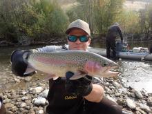 South Fork Boise River Rainbow Trout
