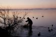 Duck hunting, C.J. Strike Reservoir, Southwest Region