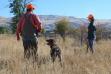 Upland bird hunters, southwest region, Montour Wildlife Management Area