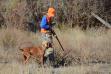 Upland hunting, Montour Wildlife Management Area, southwest Idaho