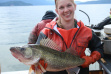 Biologist with Lake Pend Oreille walleye