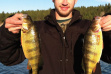 Cody Janssen shows off two healthy perch caught at Lake Cascade