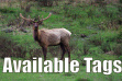 Elk in velvet, available CH tags
